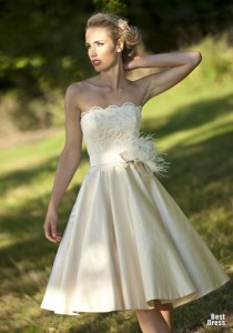 1329742124_evie-wedding-dress